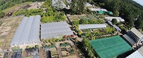 Take a look around our nursery