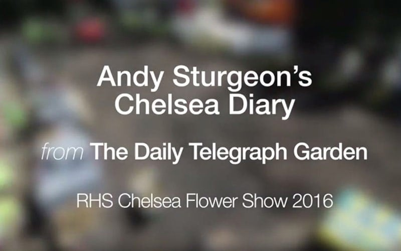 The Telegraph Garden Chelsea 2016 Episode 2