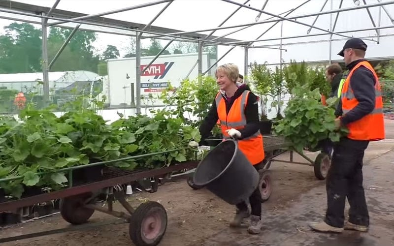 The plants for the Chelsea Flower Show start to arrive Day 12