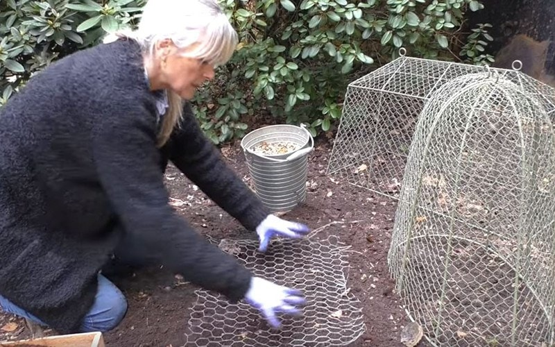 How To: Squirrel-Proof Bulbs