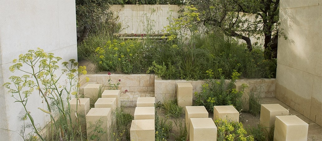 James Basson's 2017 garden