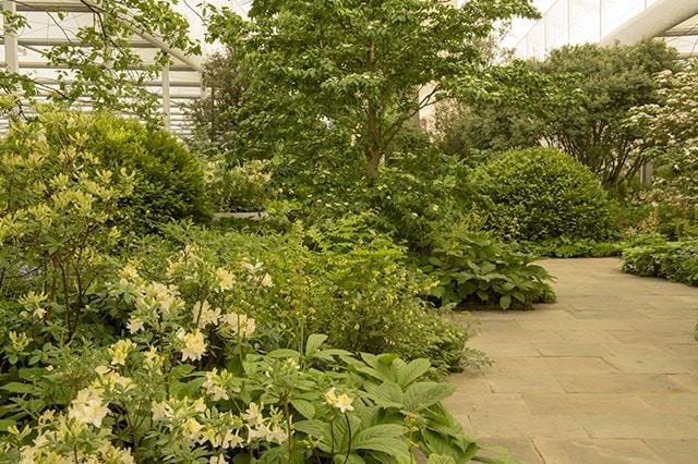 The Weston Garden
