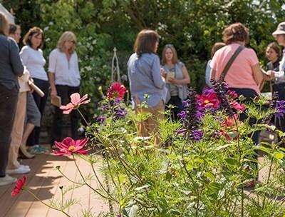 Crocus Garden School
