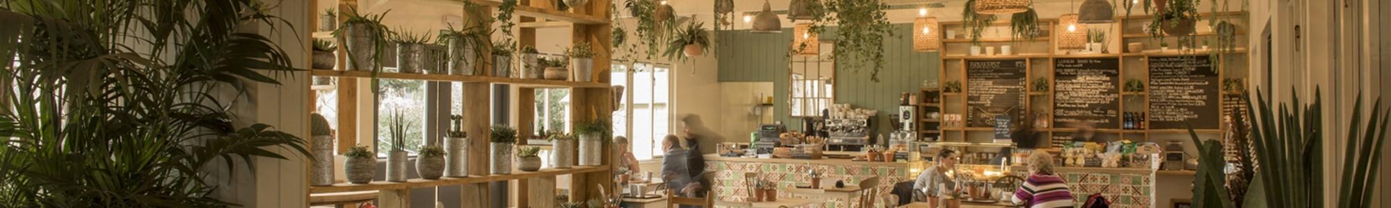 CrocusPlant Centre at Dorney Court Kitchen Garden