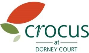 Crocus at Dorney Court