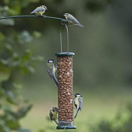 Birdcare & wildlife essentials