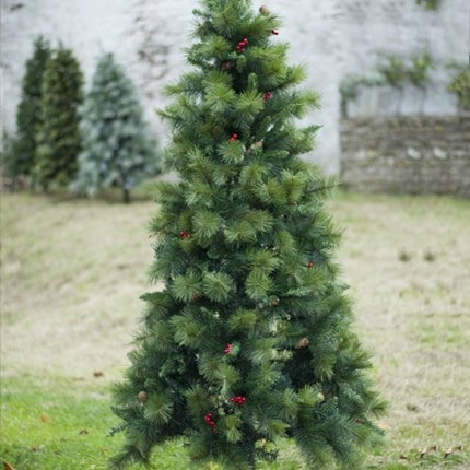 Find the perfect tree to complete your festive look