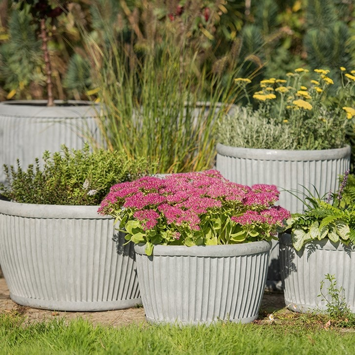 Create glorious displays with 20% off pots