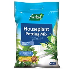 Essential kit for indoor plants
