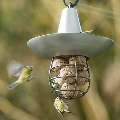 Birdcare