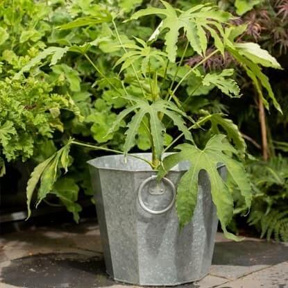 Pot combinations