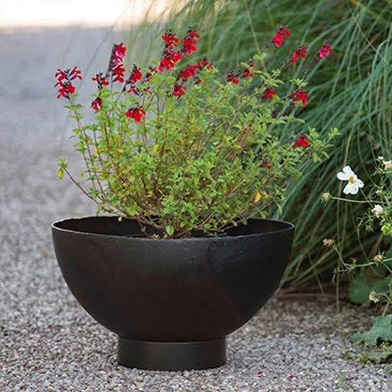 Feature pots