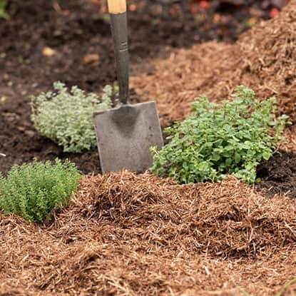 Compost, bark & mulch