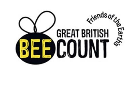 Great British Bee Count