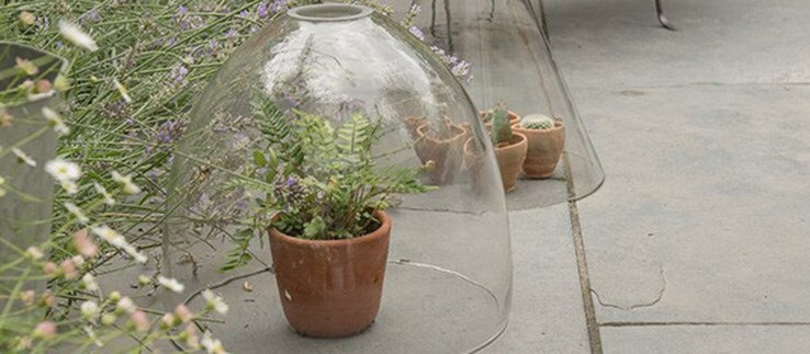 Selected cloches