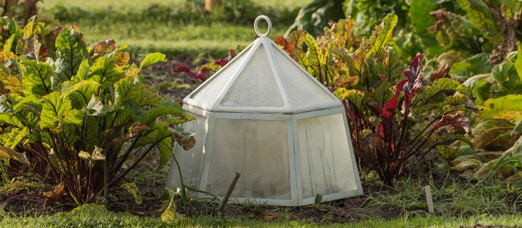 Cold frames, growhouses & cloches