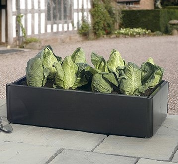Raised beds & grow bags