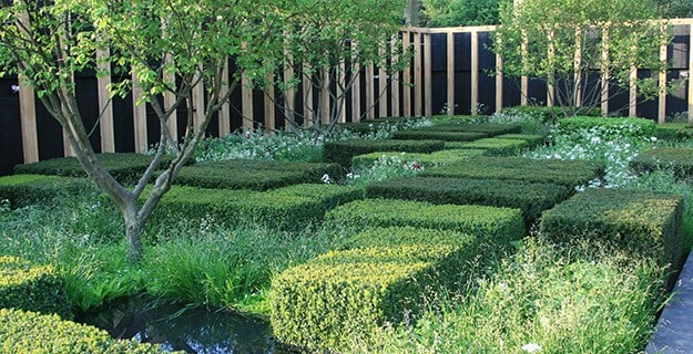 The Daily Telegraph Garden by Christopher Bradley-Hole