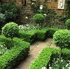 What's your style - Formal Planting