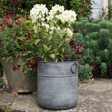 Hydrangea and metal pot combination