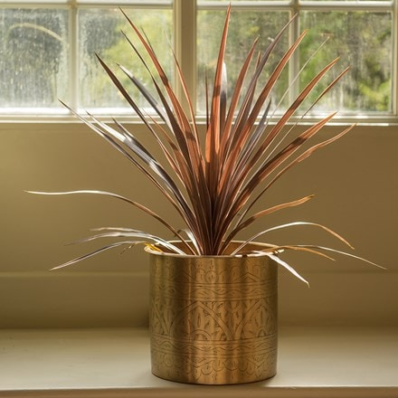 Cordyline 'Red Star' and hand etched brass planter