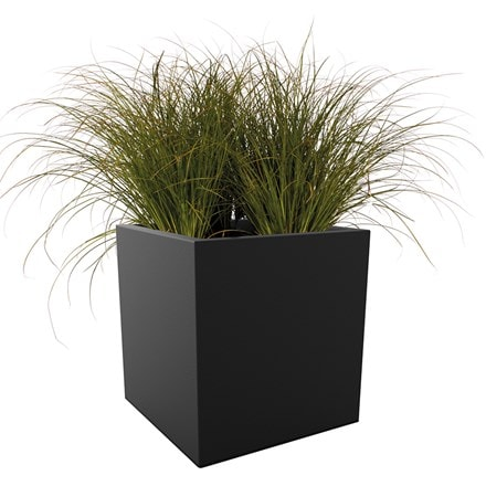 Carex testacea and Vivo square matt planter