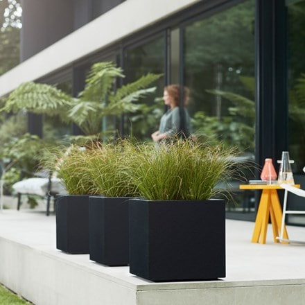 Carex testacea and Vivo square structure planter