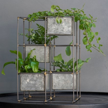 Starter fern & plant tower combination