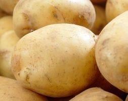 potato Rocket (PBR)