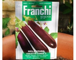 egg plant / Solanum melongena 'Violetta'