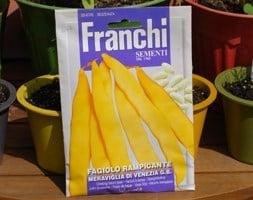 yellow Bean Cornetti meraviglia di Venezia