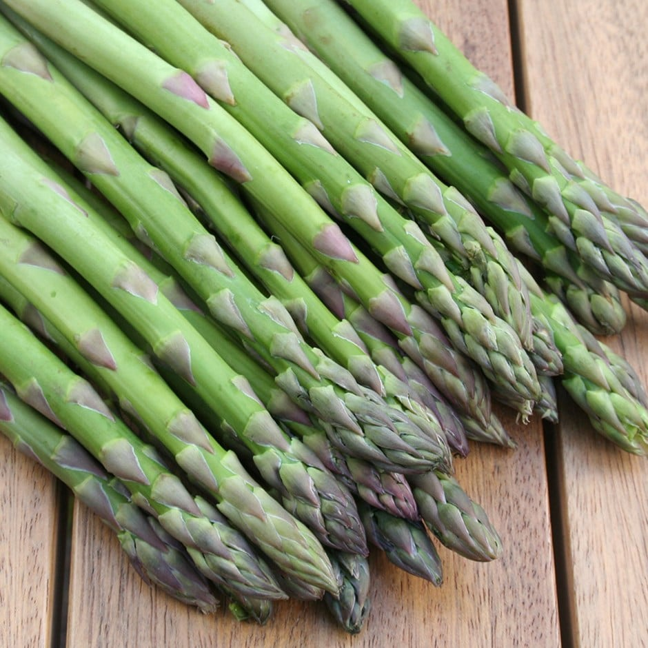 asparagus Gijnlim crowns