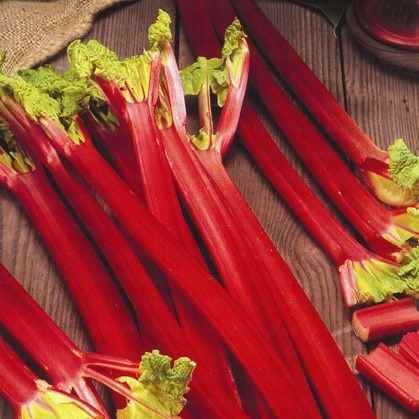rhubarb Strawberry