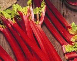 rhubarb Strawberry