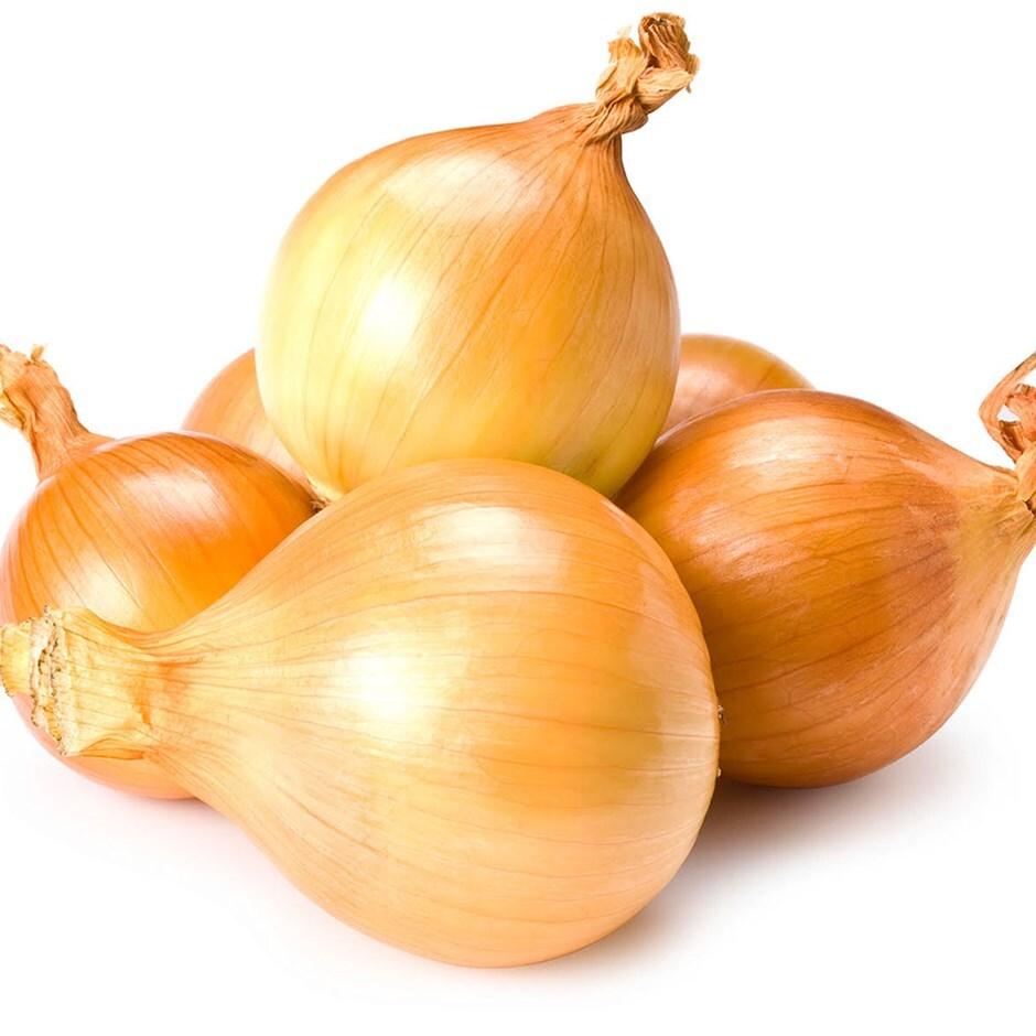 yellow round onion sets