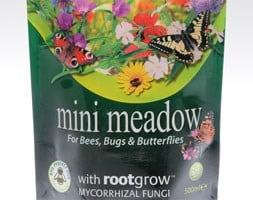 Mini wildflower meadow