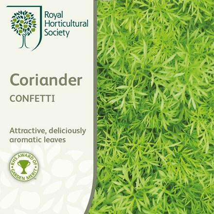 coriander Confetti