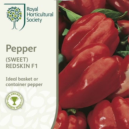 sweet pepper Redskin