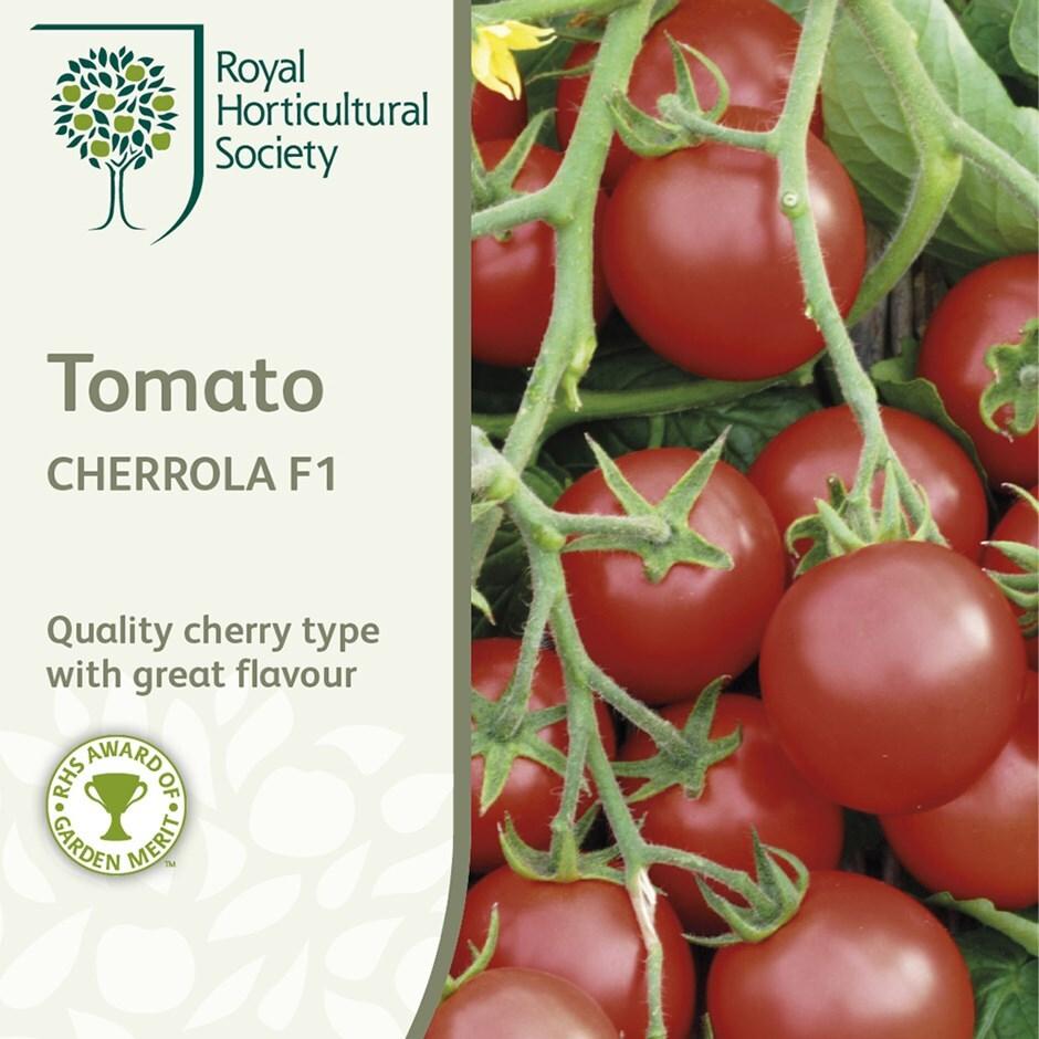 tomato / Solanum lycopersicum 'Cherrola' F1