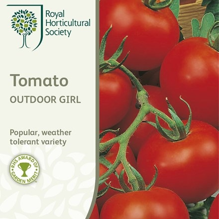 tomato Outdoor Girl