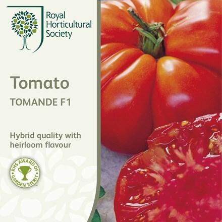 tomato Tomande