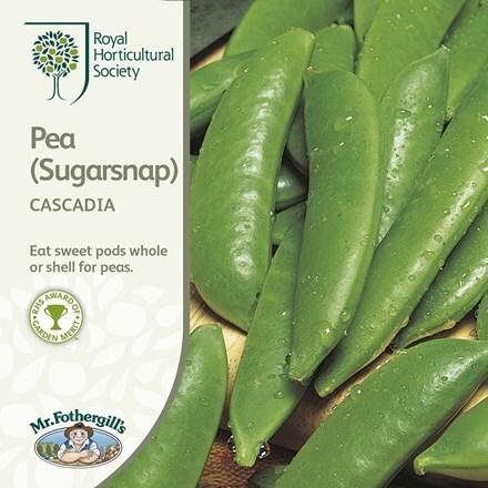pea (Sugarsnap) Cascadia