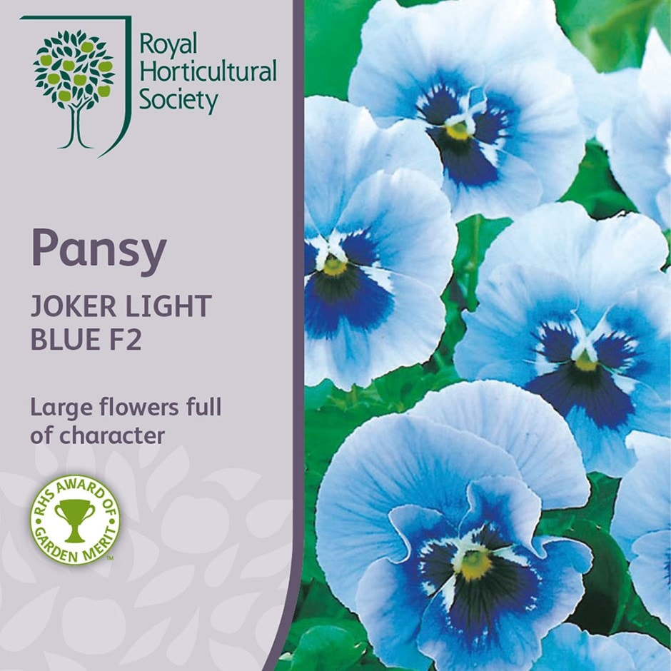 Pansy 'Joker Light Blue' F2
