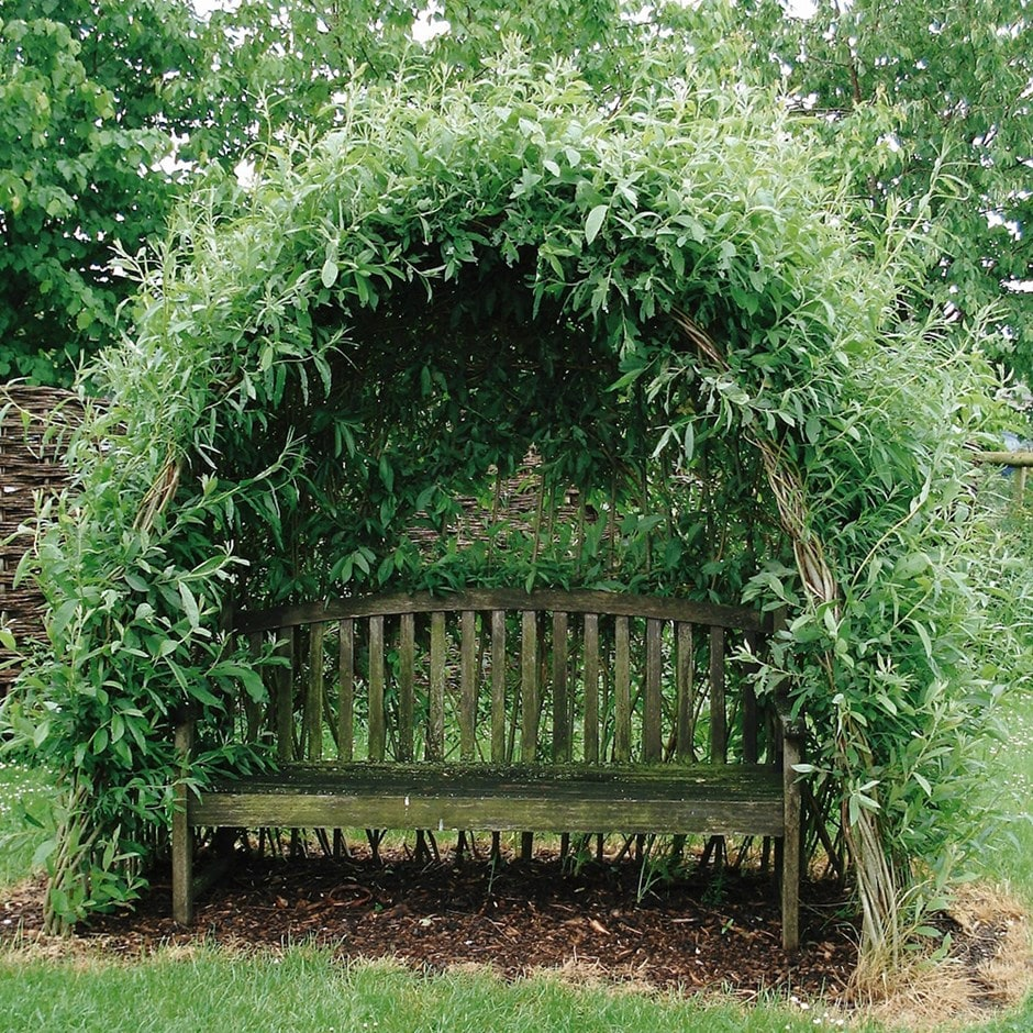 Buy Willow Kit For Arbour Or Tunnel Willow Kit For Arbour