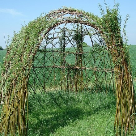 Living willow garden features