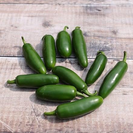 chilli Jalapeno