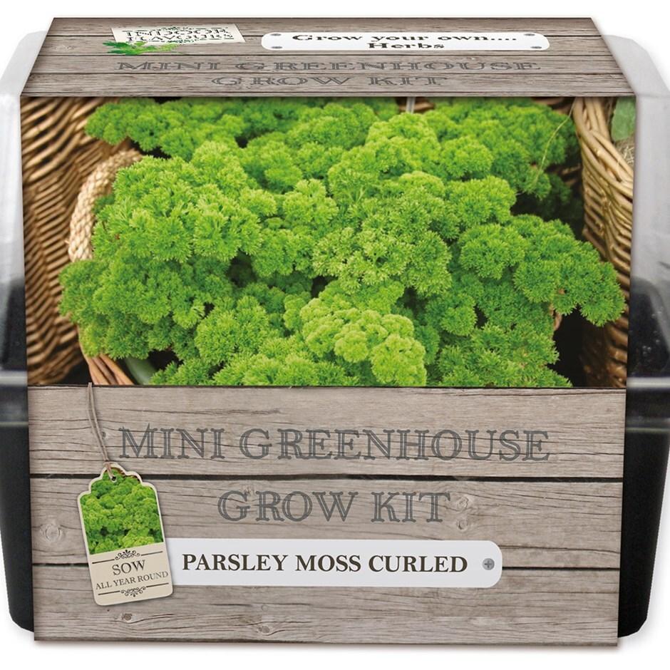 mini greenhouse seed starter kit