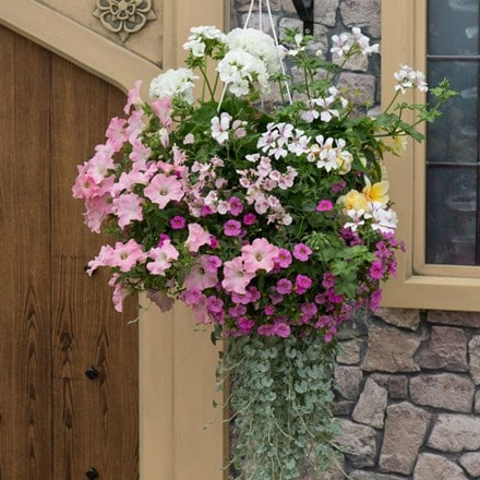 Bridal bouquet - Easyplanter for hanging baskets & patio pots