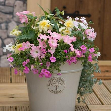 Bridal bouquet  - Easyplanter for patio pots