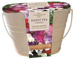 Sweet pea gift set